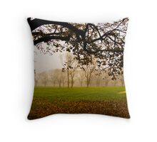 Fawkner Park on a misty morning Throw Pillow