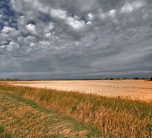 Fall On The Prairies by Kerri Gallagher