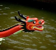 Dragon Boat by Alexander Greenwood