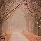 The Road to Nowhere by Kamalpreet S. Sawhney