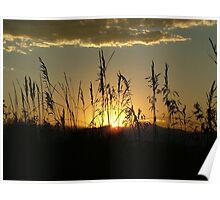 Sunset near Bennett, Colorado Poster