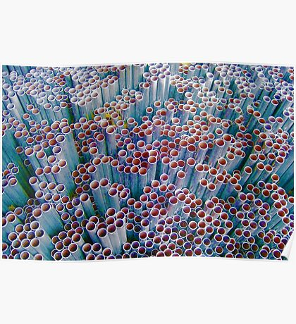 Pipes into Bubbles ~ pillow collection Poster