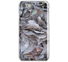 Frosty Leaves iPhone Case/Skin