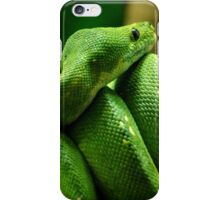 ~Coiled~ iPhone Case/Skin