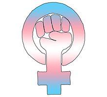 Transgender Feminist by queenbeedigital