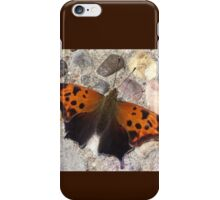 Butterfly Point iPhone Case/Skin