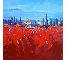 Red Tuscan Study Photographic Print