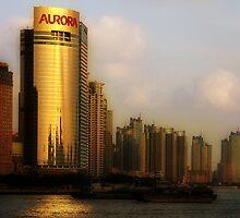 Aurora by Peter Hammer