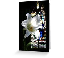 Chapel Lily Greeting Card