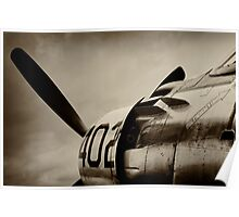Skyraider Poster