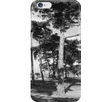 Trees, Williamstown Botanic Gardens iPhone Case/Skin