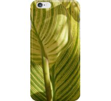 Striped Plant iPhone Case/Skin