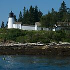 Burnt island Light 01 by Dick Butterer