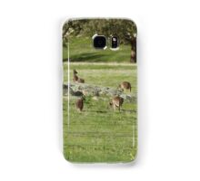 Who can see how many Roos on 'Arilka'  Mount Pleasant.  Samsung Galaxy Case/Skin