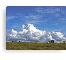 The Life of a Cow Canvas Print