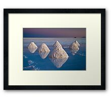 Salt mounds Framed Print