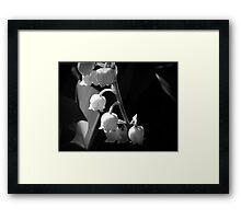 Sweet Allure Framed Print