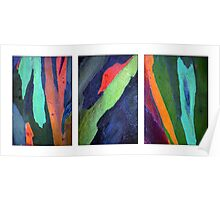 Eucalyptus Triptych Poster