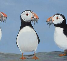 Puffins by Andy  Housham