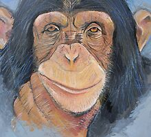 Cheeky chappy chimp by Andy  Housham