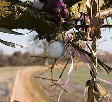 Kennet Longbarrow Wishing Tree by James Grimwood