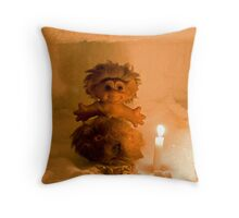 Global Warming? What Global Warming? Throw Pillow