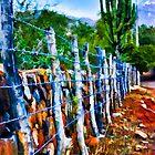 Barbed-Wire Fence Landscape by John Corney