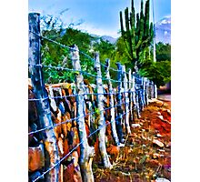 Barbed-Wire Fence Landscape Photographic Print