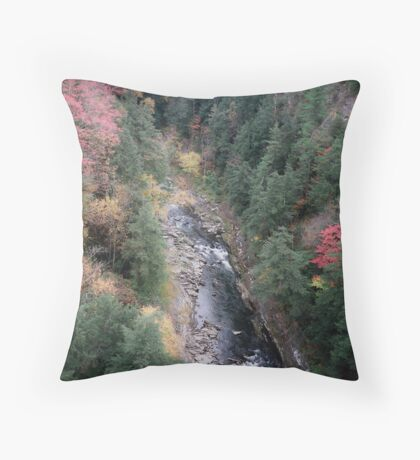 Quechee Gorge Throw Pillow