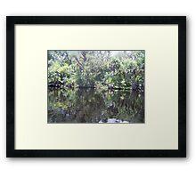 St. Johns River Framed Print
