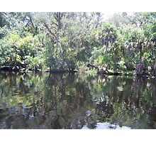 St. Johns River Photographic Print