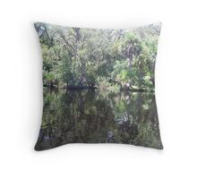 St. Johns River Throw Pillow