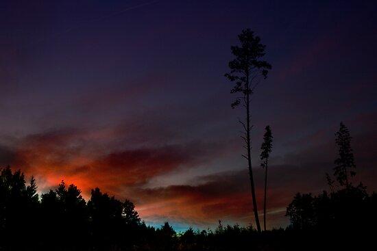 SKY FIRE by Antanas