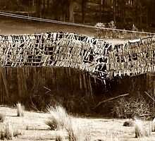 """""""falling shed"""" sepia by Husky"""