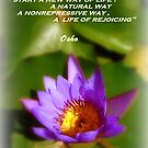 Osho's Words of Wisdom by Charmiene Maxwell-Batten