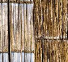 Bamboo Wall by Walter Quirtmair