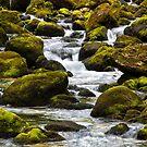 Creek by Walter Quirtmair