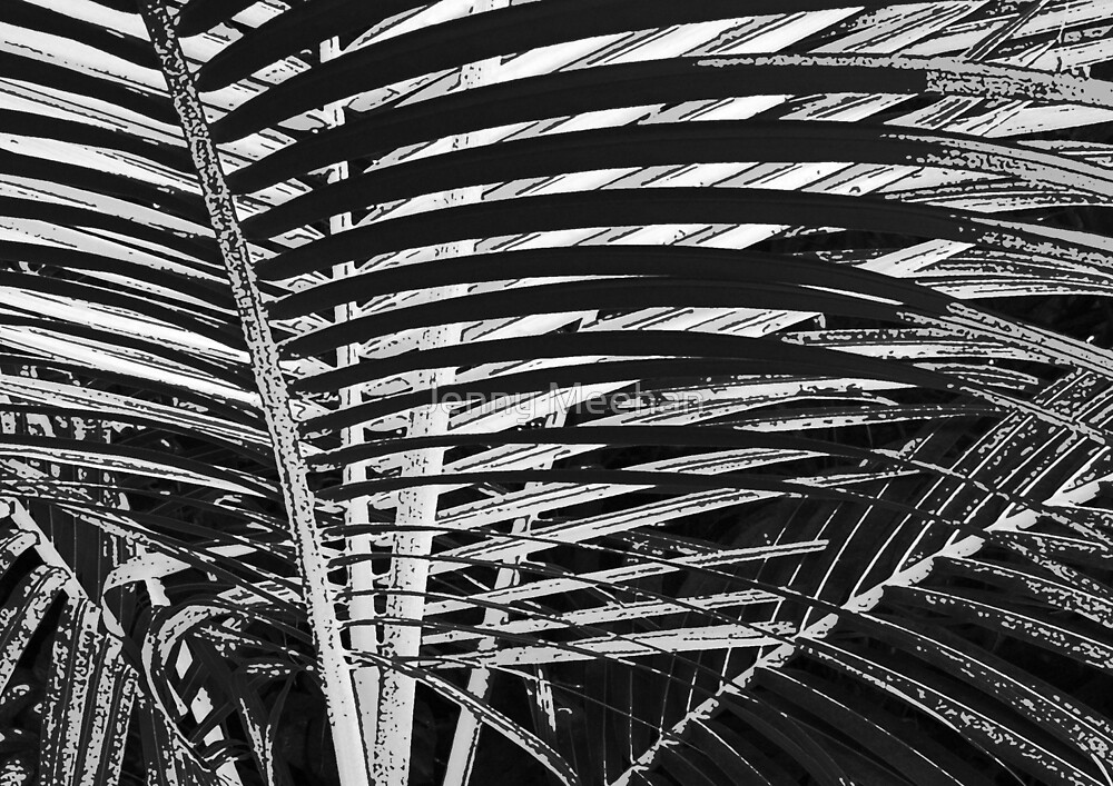 Coconut Palm Leaf Abstract by Jenny Meehan  by jenny meehan