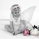 Fairy by Christine Wilson