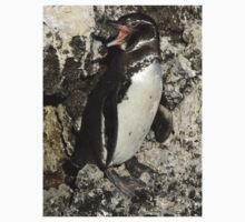 Awesome Galapagos Penguin Kids Clothes