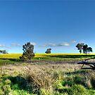 Rural Pano by GailD