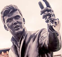 A heart for Billy Fury by Beverley Goodwin