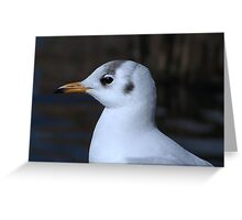 Did you get my best side? Greeting Card