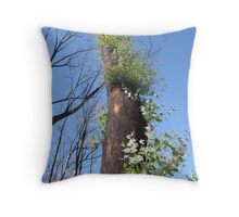 black saturday fire Throw Pillow