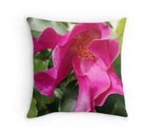 Roses in macro Throw Pillow