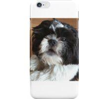 Shih tzu puppy iPhone Case/Skin