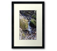 Natural Spring Lake District Framed Print