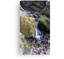 Natural Spring Lake District Canvas Print