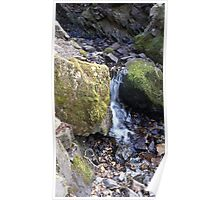 Natural Spring Lake District Poster