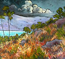 The Gathering Storm by Carla Whelan